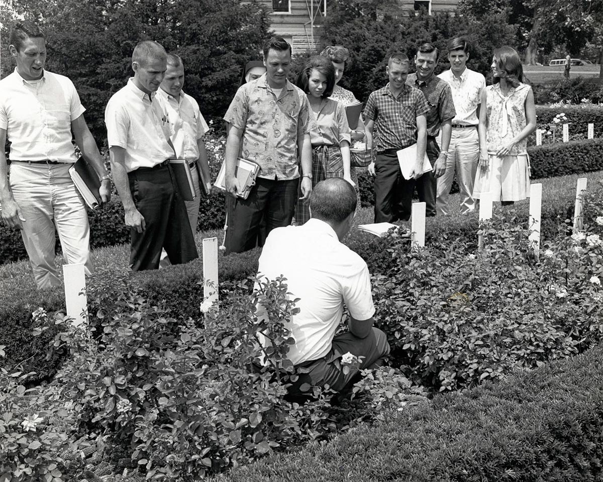Students look at plants in the university garden in 1964